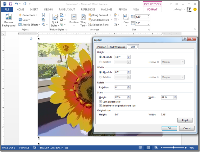 "Where does the ""Original size"" of a picture in Microsoft Word come from? (1/5)"