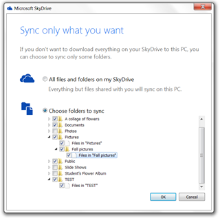 SkyDrive-sync-12